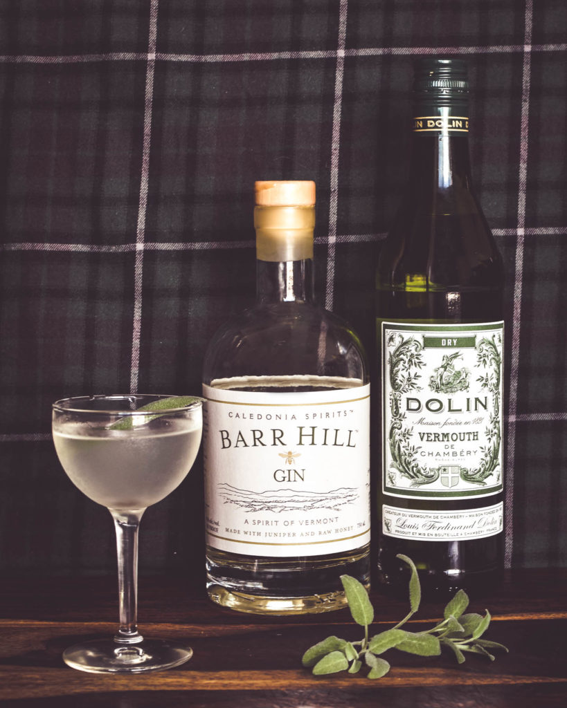 martini with barr hill gin and dolin dry vermouth